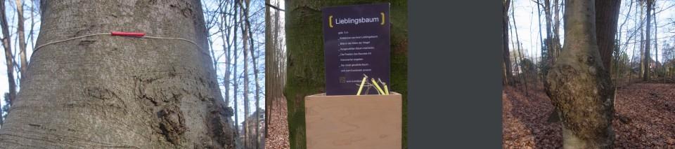 lbaum 3_bearbeitet-2
